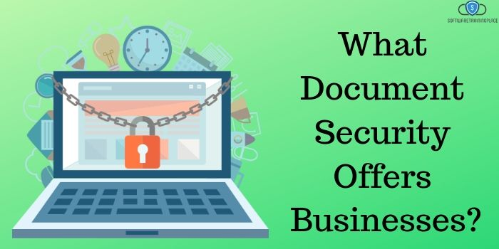 What Document Security Offers Businesses